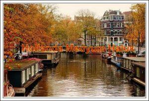 Medyum Hollanda